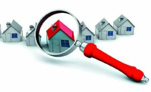 auckland property rentals